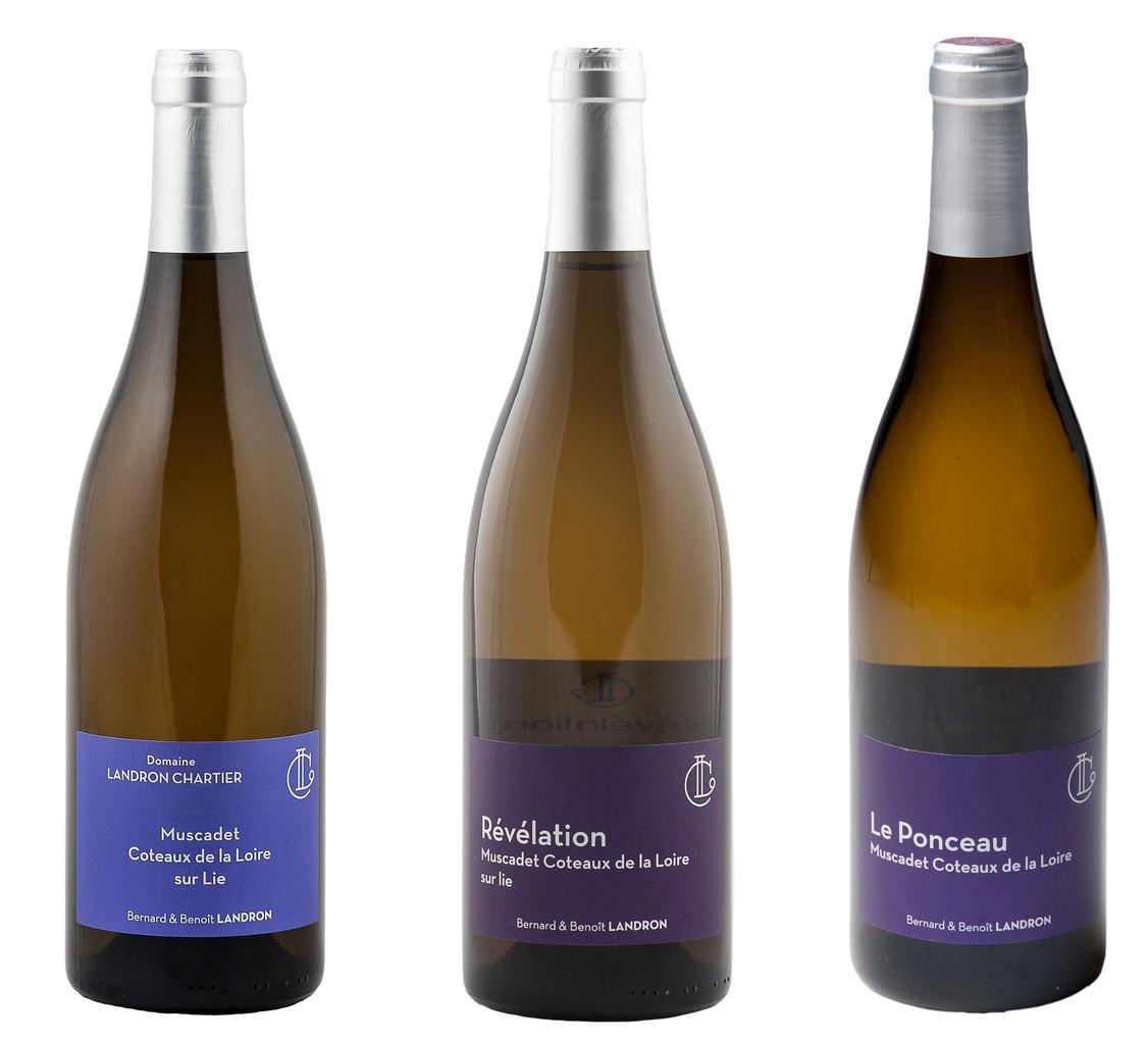 Photo de Domaine Landron Chartier, membre de Bout à Bout, réseau de réemploi des bouteilles en verre en Pays de la Loire