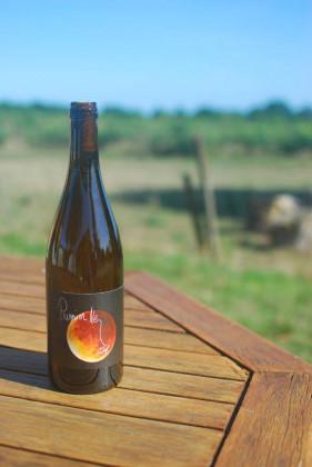 Photo de Nicolas Arnou, membre de Bout à Bout, réseau de réemploi des bouteilles en verre en Pays de la Loire