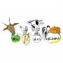 le logo de Au Fil Des Saisons